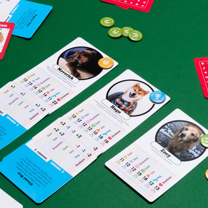 Cards from 'We Rate Dogs' laid on on a green table