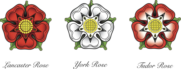 The York Rose, the Lancaster Rose, and the Tudor Rose.