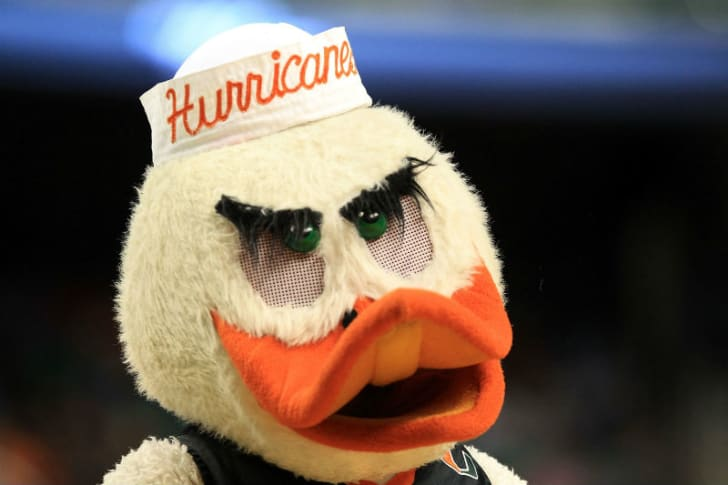 Sebastian the Ibis appears during a University of Miami game