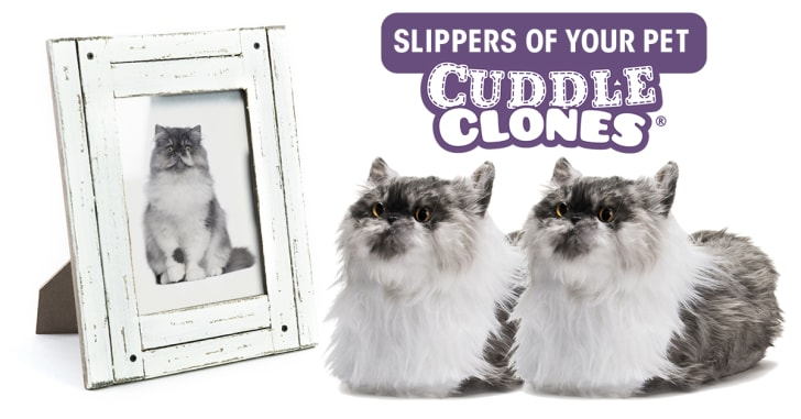 Personalized cat slippers