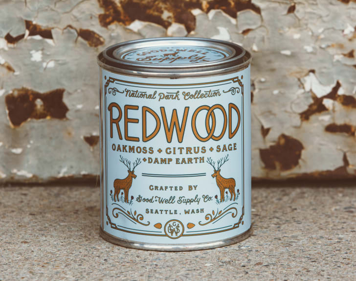 Good + Well Supply Co National Park candle in Redwood