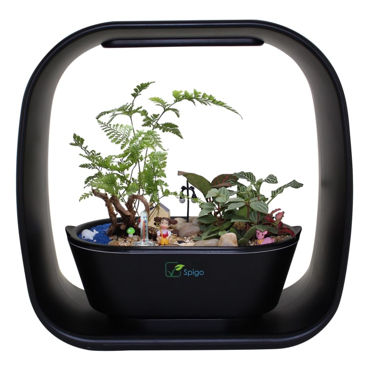 A self-watering planter with an LED light