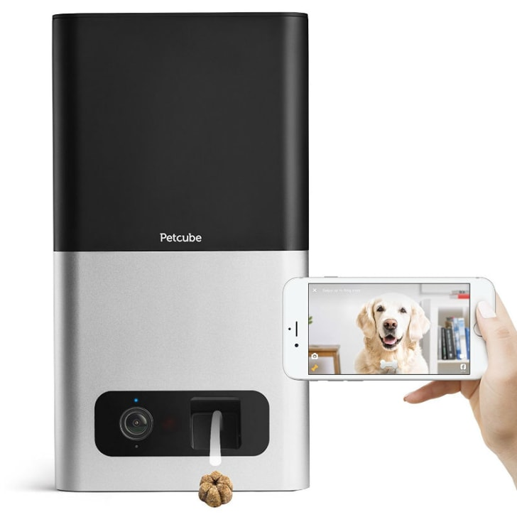 A look at the Petcube Bites pet camera with treat dispenser