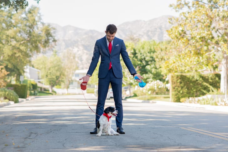 Businessman in a suit takes his dog for a walk