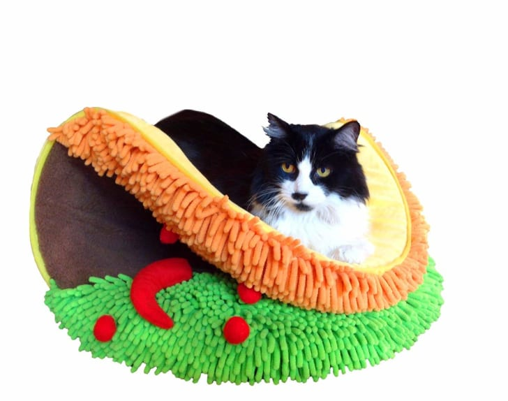 A cat in a bed that looks like a taco.