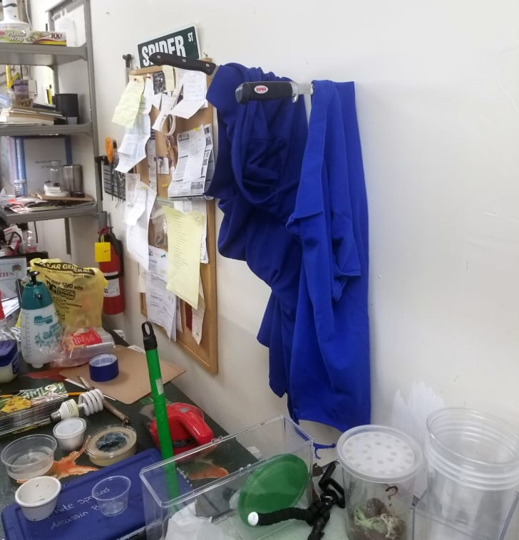 Two blue uniforms stuck into a wall with knives