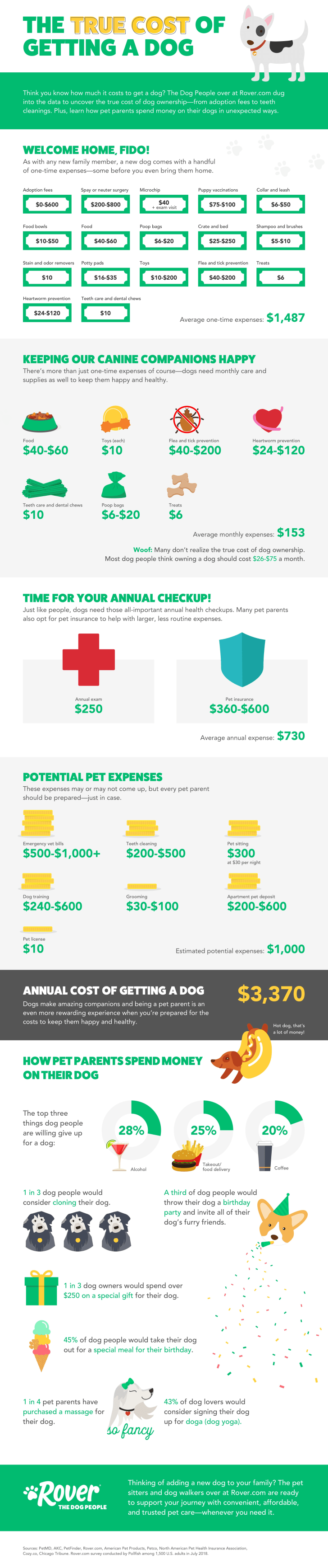 Infograhpic about dog care.