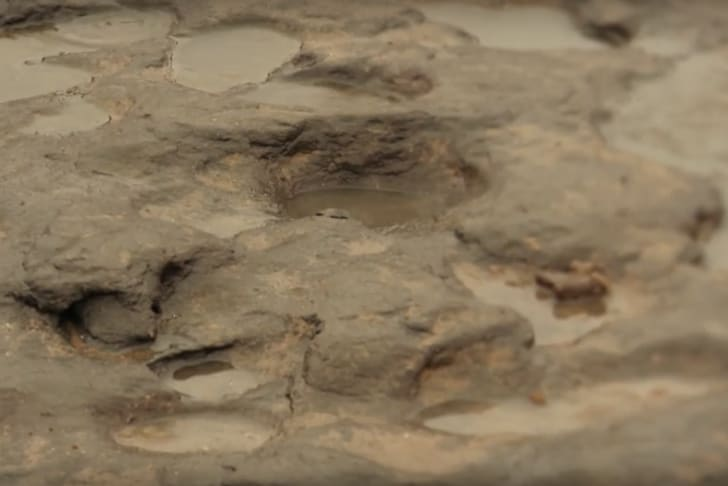 Oldest human footprints, found in Africa