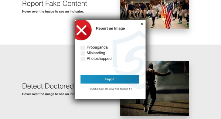 SurfSafe 'Report an Image' window