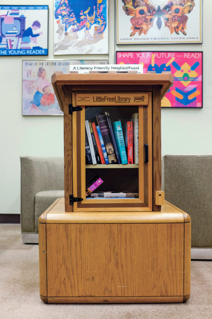 Small Wonders: 11 Facts About Little Free Libraries | Mental