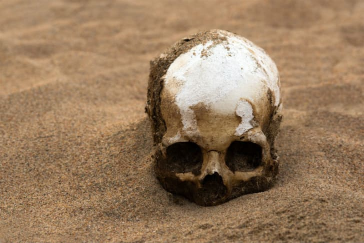 A human skull sits half-buried in sand