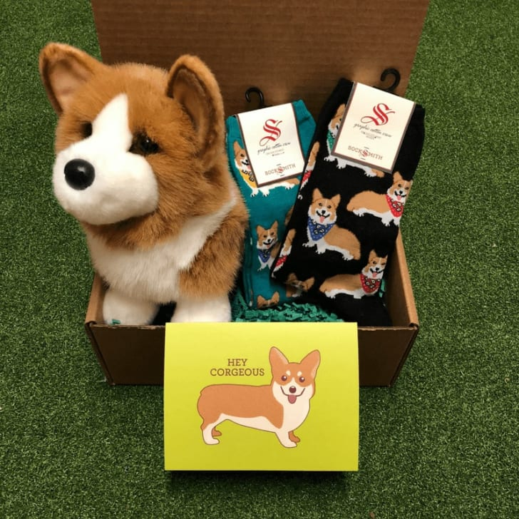 Corgi goodie box