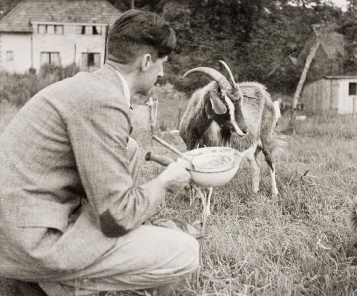 Orwell with his goat Muriel