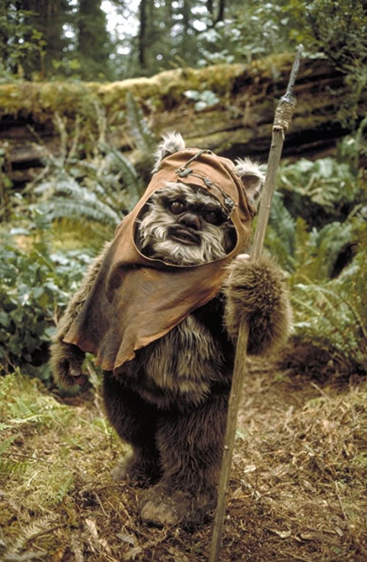 Warwick Davis in 'Return of the Jedi' (1983)