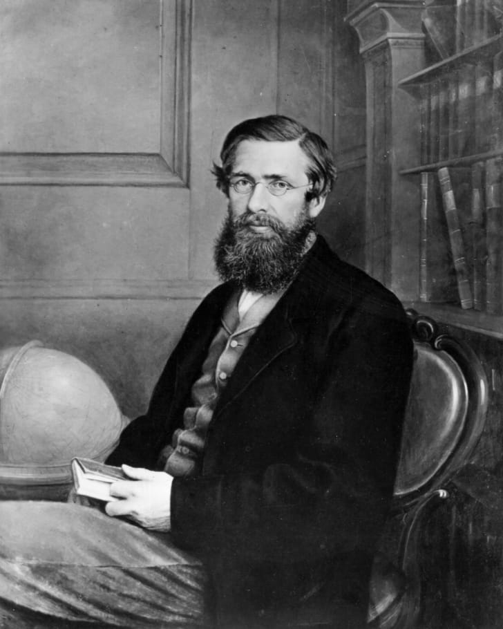 Portrait of Alfred Russel Wallace, Welsh naturalist and explorer