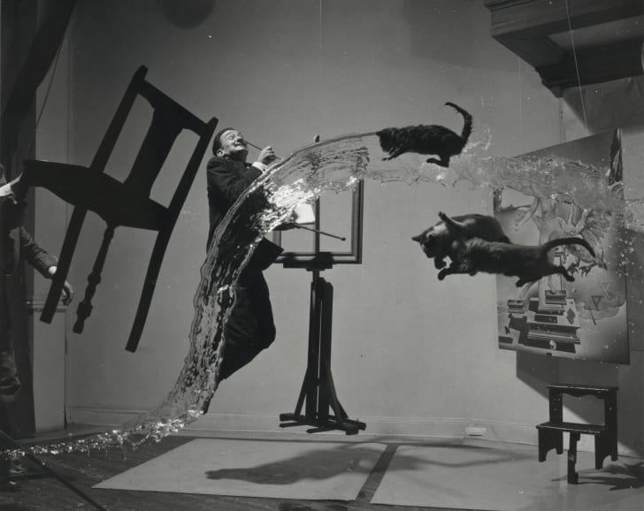 A portrait of Salvador Dalí in midair with chairs and cats