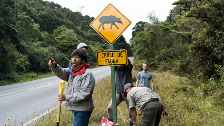 The Nai Conservation team installs tapir crossing road signs in Costa Rica.