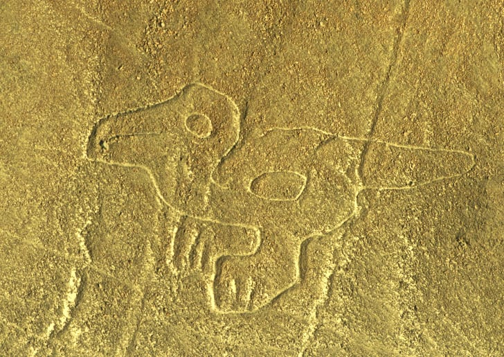 Aerial view of a geoglyph representing a Duck or a Dinosaurius at Nazca Lines