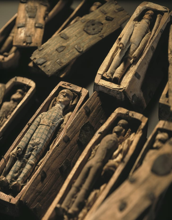 Close-up of the coffins discovered in Edinburgh in 1836