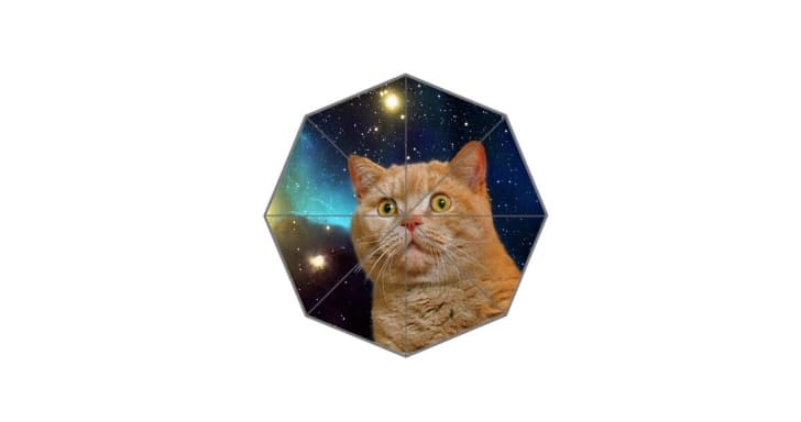 cat in space umbrella