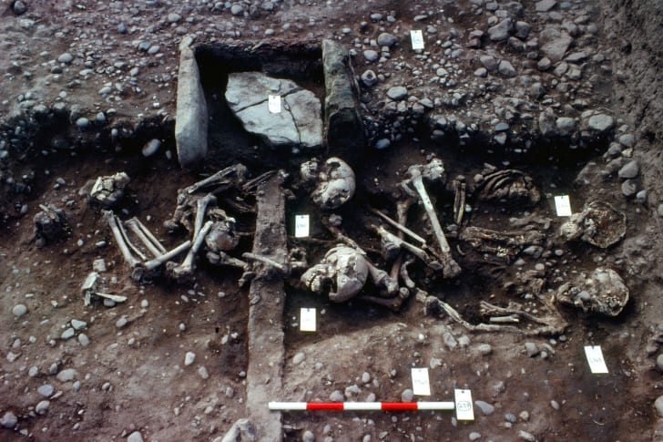 Viking Era bones discovered at a burial mound in Repton, England