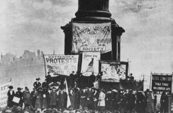 Photo of an anti-vivisection demonstration in Trafalgar Square, London, to protest the removal from Battersea Park of the Brown Dog statue