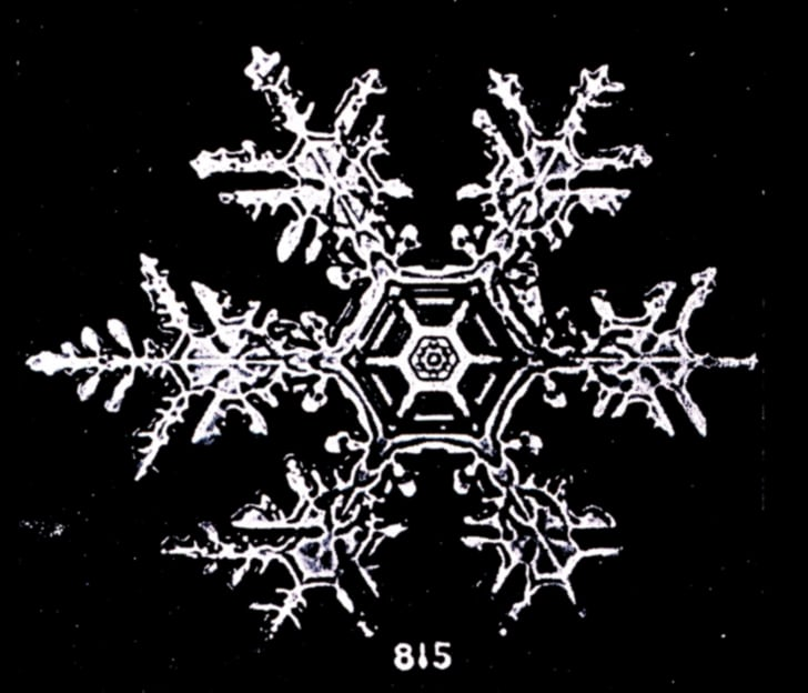 Photo of a snowflake by Wilson A. Bentley