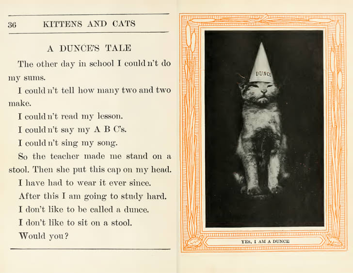 A spread from 'Kittens and Cats' features an image of a cat in a dunce's cap.