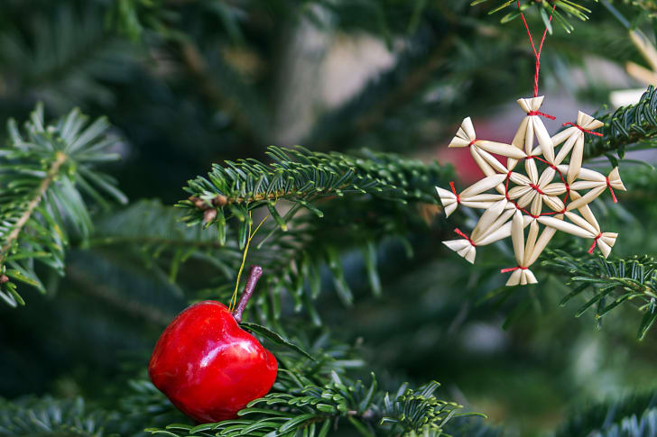 An apple hangs from a Christmas tree