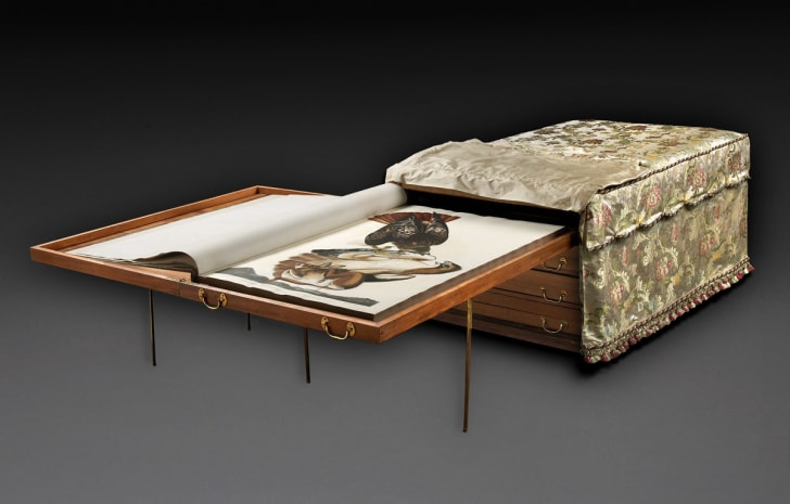 Audubon ottoman, an object in Field Museum Library collections, with one of its drawers extended and a copy of The Birds of America opened on it.