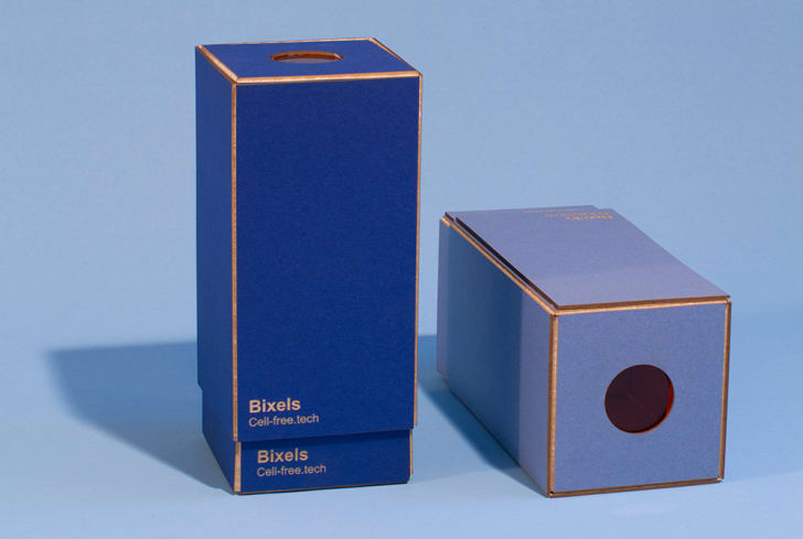 Two blue boxes hold Bixel pixel grids.