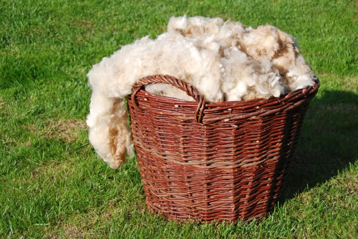 Basket of wool on the grass
