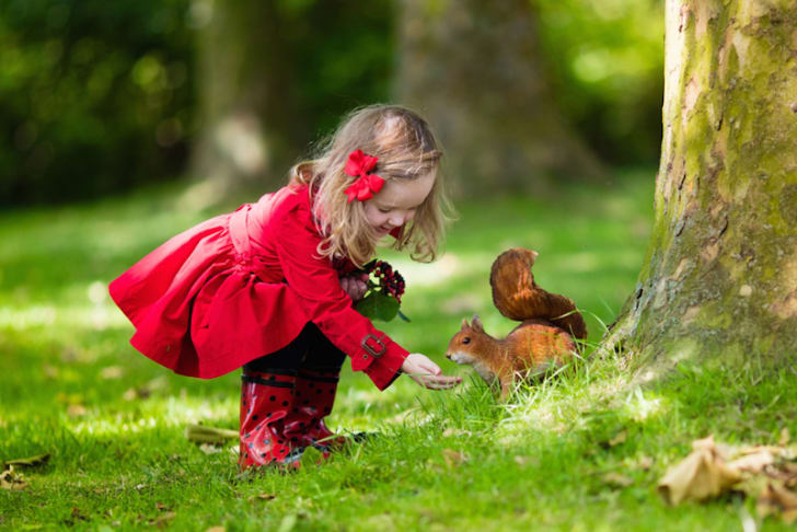 Photo of a little girl feeding a squirrel