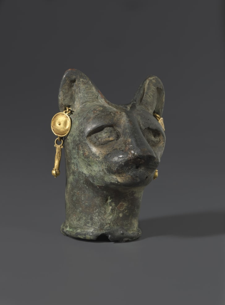 An ancient Egyptian bronze cat head adorned with gold jewelry, on display at the Smithsonian's Arthur M. Sackler Gallery.