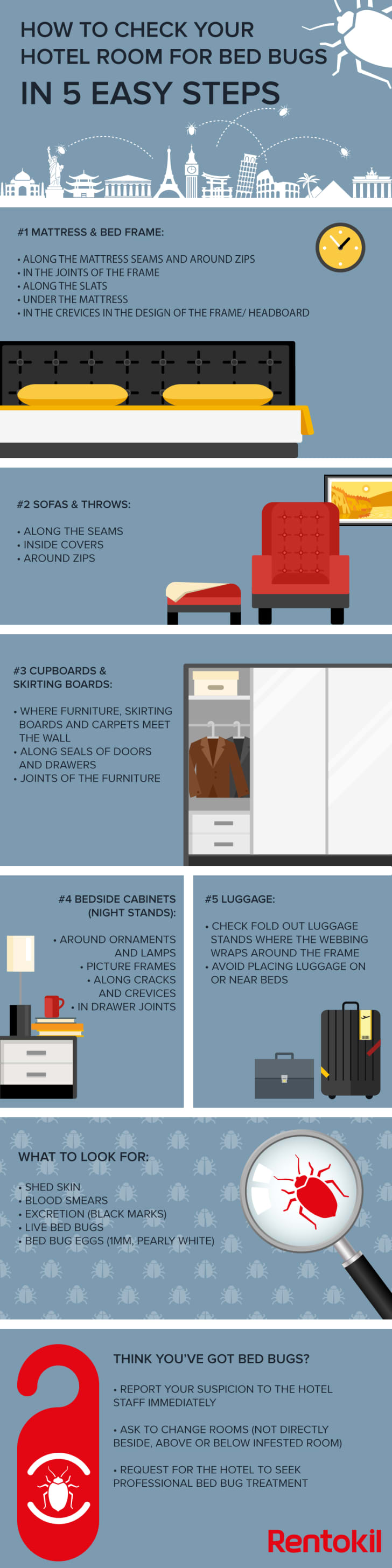 An illustrated infographic details five steps for checking your apartment for bedbugs.