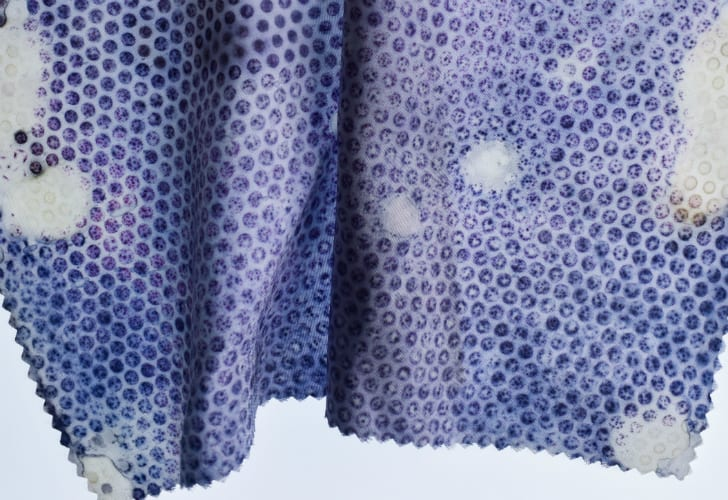 Closeup of fabric inoculated with vivid purple bacteria.