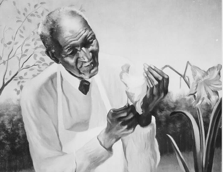 Detail of a painting of George Washington Carver tending a flowering plant.