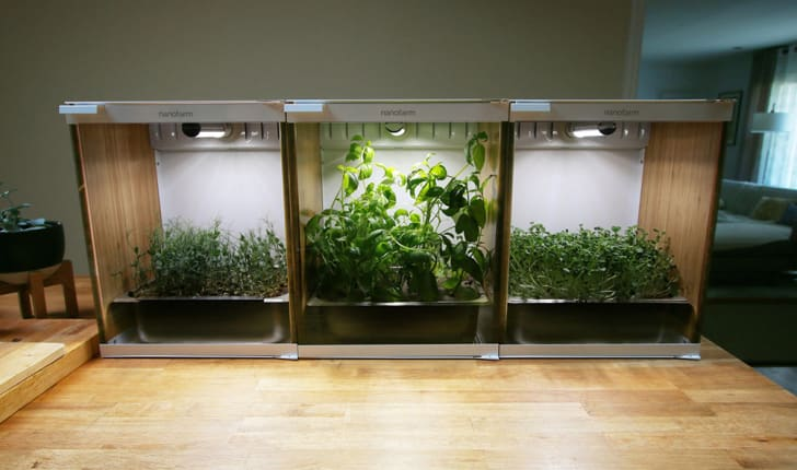 Three Nanofarm boxes filled with herbs sit next to each other on a wooden table.