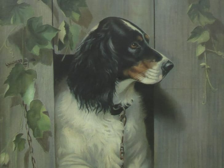 the brook hill dog painting by Alexander Pope