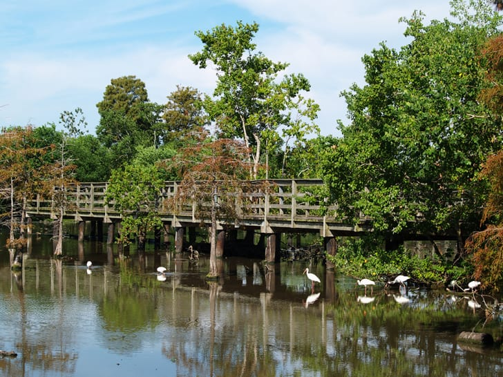 A footbridge over Lafreniere Park in Metairie