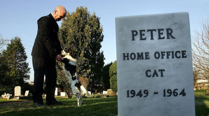 12 Fascinating Pet Cemeteries Around the World | Mental Floss