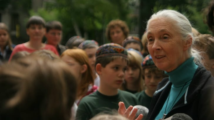 Jane Goodall in a crowd.