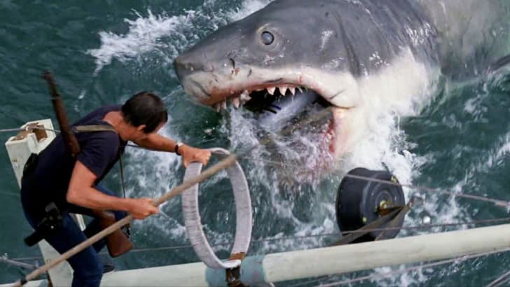 film still from jaws