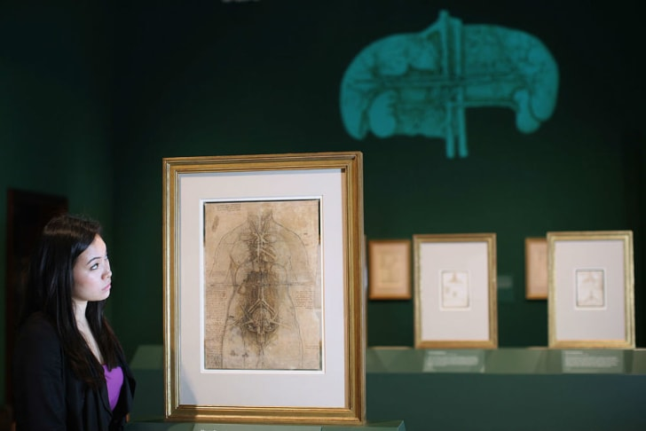 A museum visitor examines the work of Leonardo da Vinci