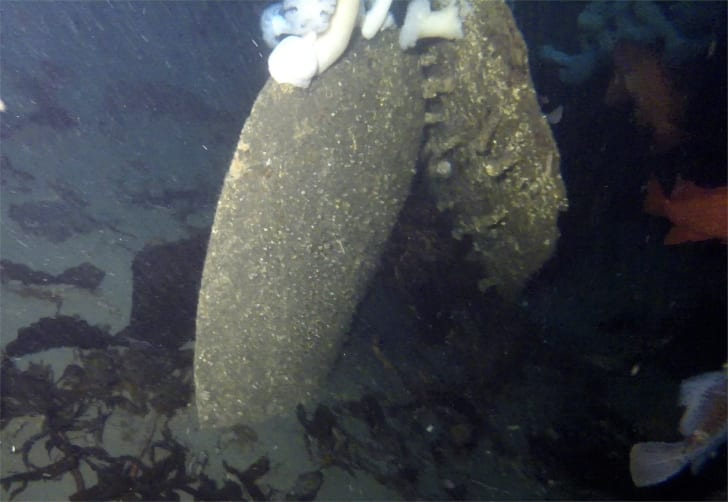 Wreckage of the USCGC McCulloch, which sunk 100 years ago on June 13, 1917.