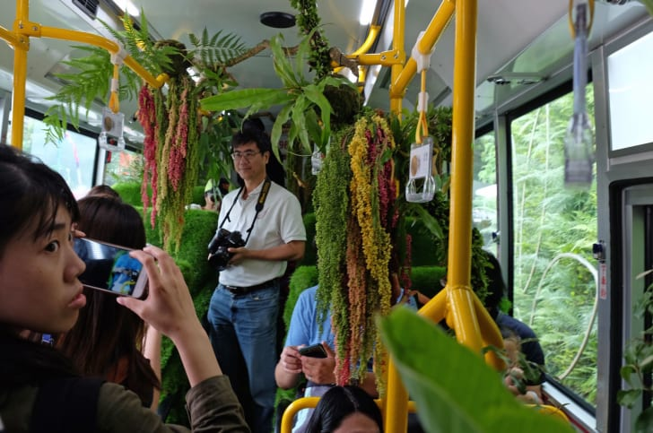 "Interior of the ""traveling forest"" bus."