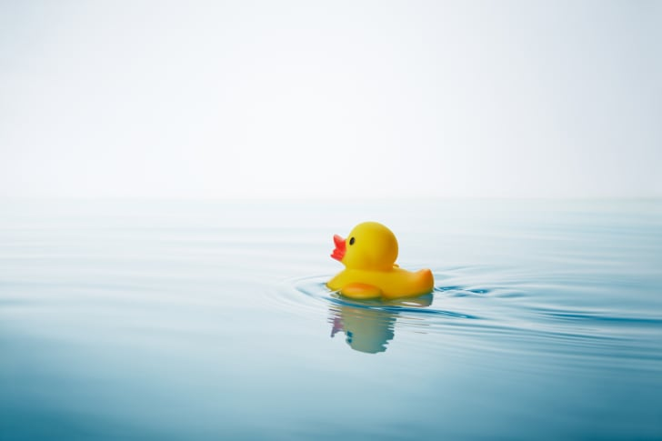 A rubber duck floats in the water