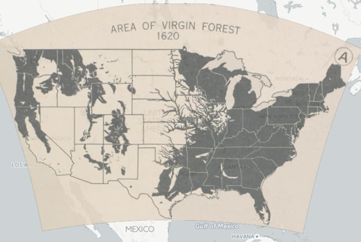 15 Vintage Online Map Collections to Explore   Mental Floss