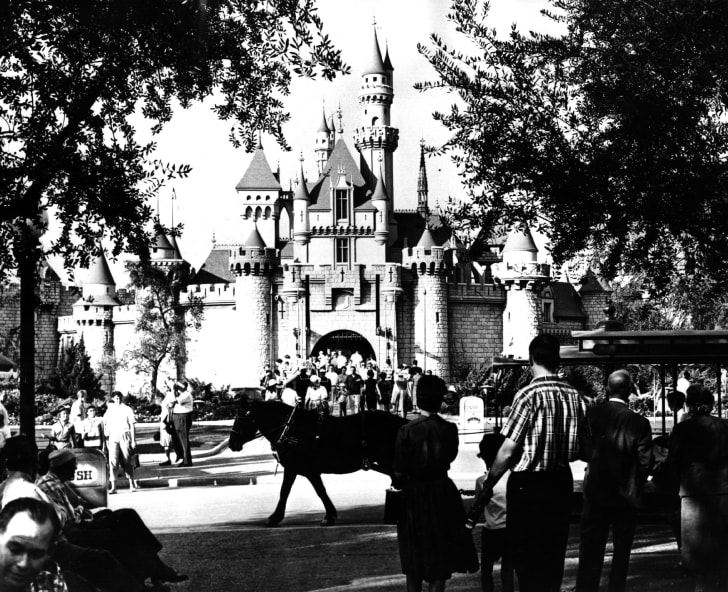 An early look at Disney World.