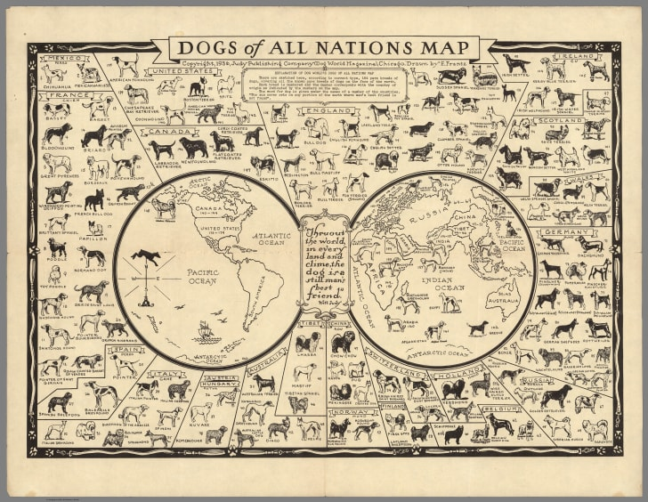 1936 Map of the Dogs of All Nations | Mental Floss  Map Of Pacific on tahiti map pacific, garbage island pacific, war in pacific, world war ii pacific, world map pacific, silestone pacific,